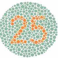 daltonizmo testas